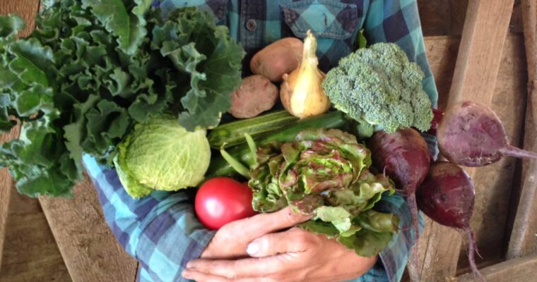 Eat Local Month: Experience joy and purpose while eating local for a resilient food future