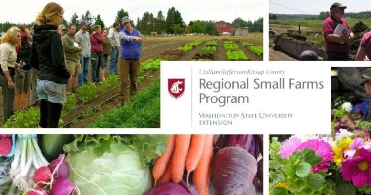 WSU Extension – Regional Small Farms Program (Jefferson, Clallam, Kitsap)